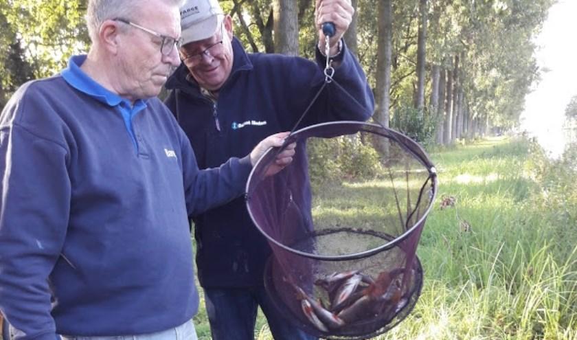 Weging van de gevangen vis   | Fotonummer: fa8431