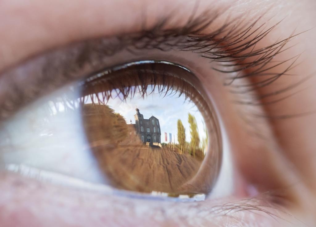Op de foto van Jeroen Segers (spiegeling) werd het vaakst gestemd Foto: Jeroen Segers © deMooiLaarbeekkrant