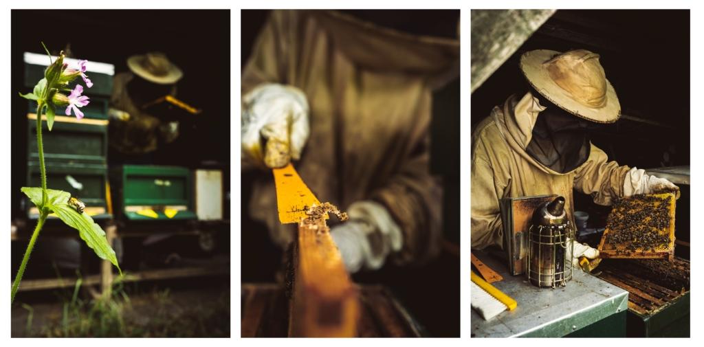 Werkzaamheden van de imker, in beeld gebracht door Jessimo Coeymans Foto: Jessimo Coeymans © deMooiLaarbeekkrant