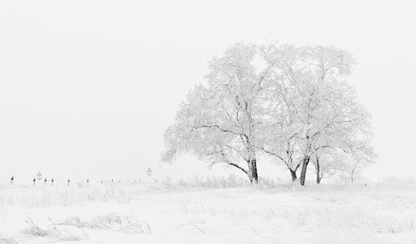 Gezocht: mooie winterse plaatjes voor in de krant   Foto: pr