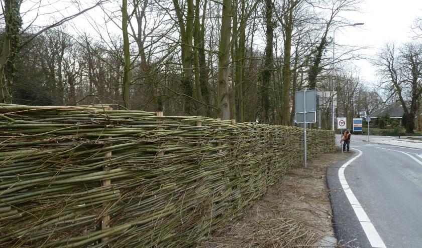Het nieuwe hek van wilgentakken aan de Rijnsburgerweg in Voorhout. | Foto: pr.