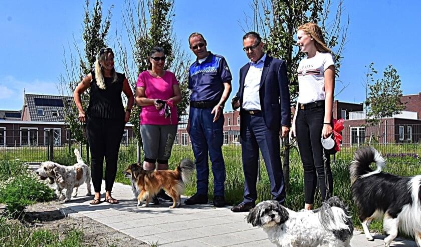 Gaan hondenbezitters straks betalen?   Foto: Archief/Piet van Kampen