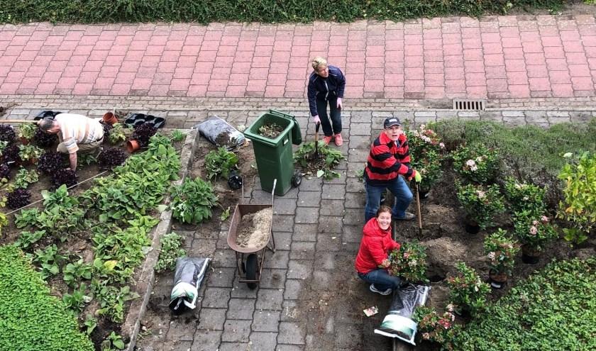 Een workshop wintertuinieren maakt deel uit van het palet aan activiteiten. Op 9 november van 14.30-16.30 uur in Bibliotheek Voorhout. | Foto: PR