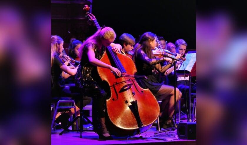 Bekende teylingers dirigeren het Kennemer Jeugd Orkest. | Foto: PR