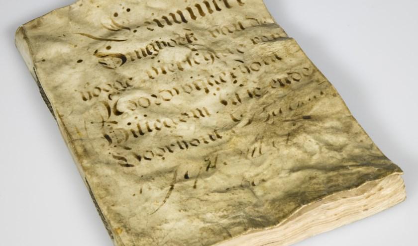 Het dingboek beschrijft allerlei criminele zaken uit de regio tussen 1698 en 1726, waar destijds mensen voor veroordeeld zijn.