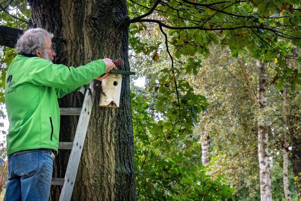Bestuurslid Albert Stegeman hangt het eerste nestkastje op de stam van een grote eik Foto: Johan Kranenburg © uitgeverij Verhagen