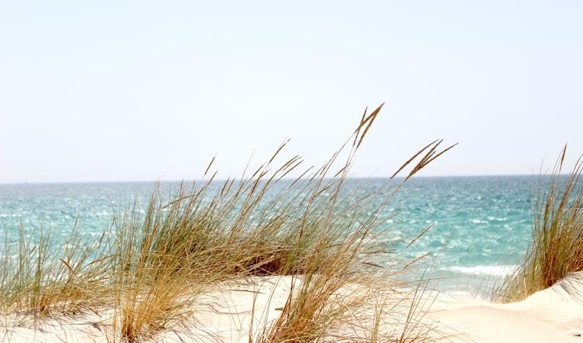 Wandelen door de duinen en langs het strand, dat gebeurt zaterdag in groepsverband via Bewust Bollenstreek.