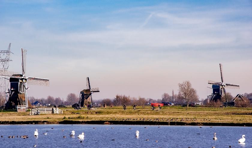 Ook de molens in Leiderdorp kunnen profiteren van de subsidieregeling. | Foto: J.P. Kranenburg
