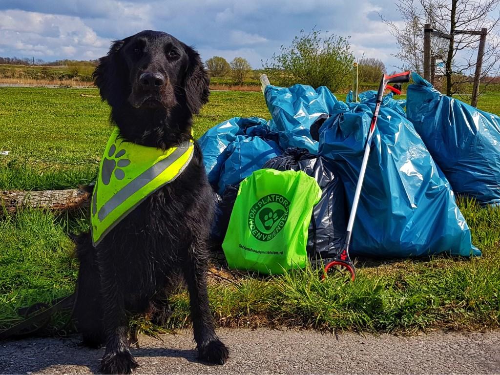 Ook hond Bongo deed mee met de schoonmaakactie. Hij haalde allerlei troep uit het water.  Foto:  © uitgeverij Verhagen