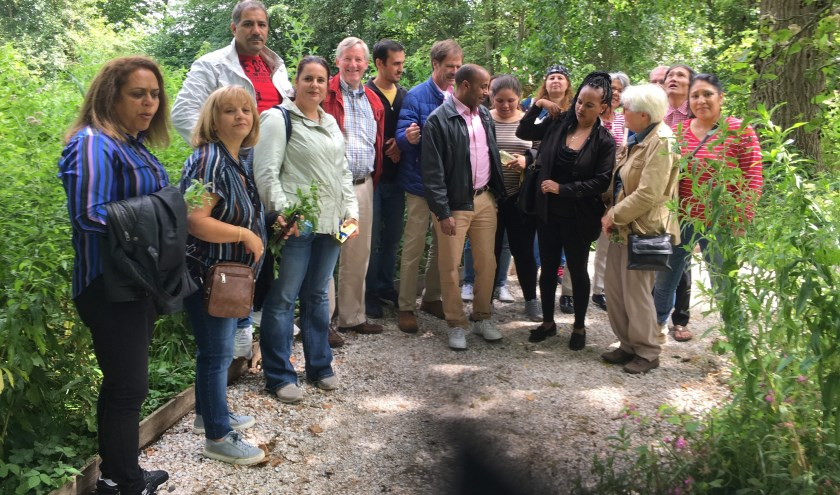 De gemeente heeft in 1980 de tuin overgenomen en zo veel mogelijk de natuur zijn gang laten gaan.   Foto: pr
