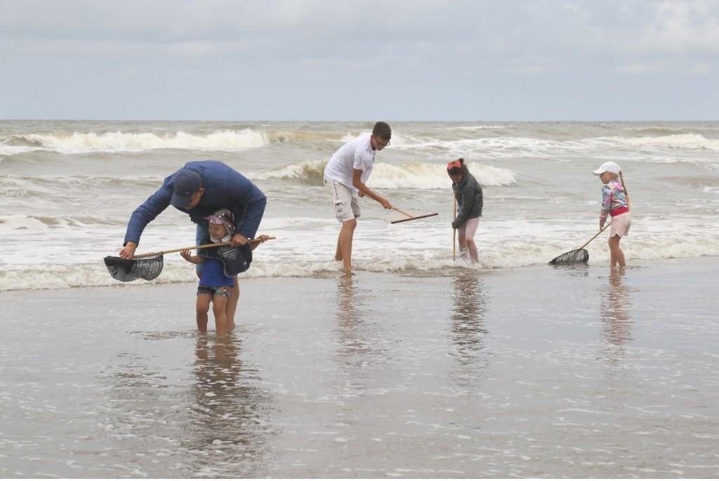 Zoek mee naar schelpen en andere schatten uit de zee.  © uitgeverij Verhagen