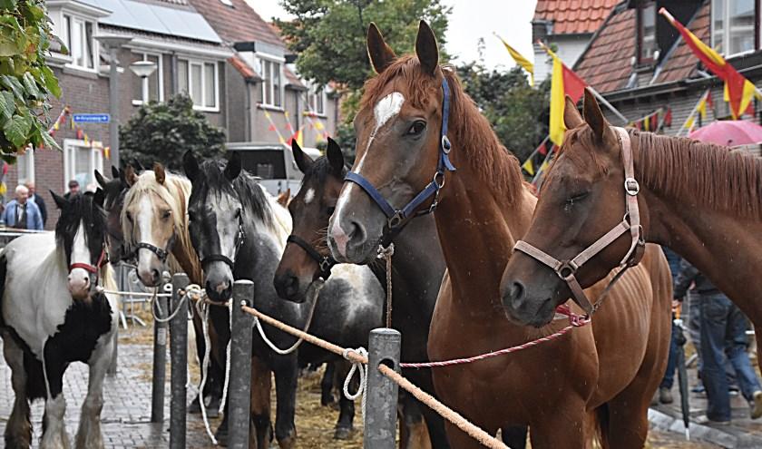 Paarden en mensen lieten zich door de regen niet storen.