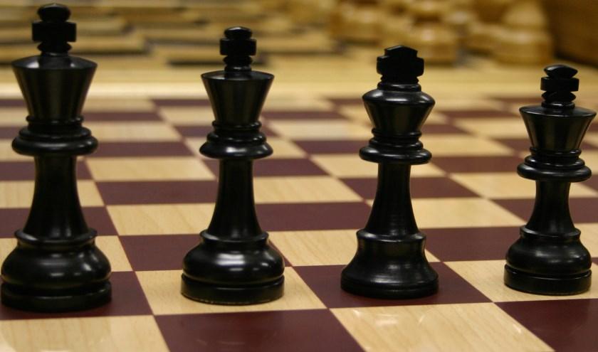 Leer schaken bij de Vrijpionnen. Wie weet blijk je wel een Koning te zijn! | Foto: PR