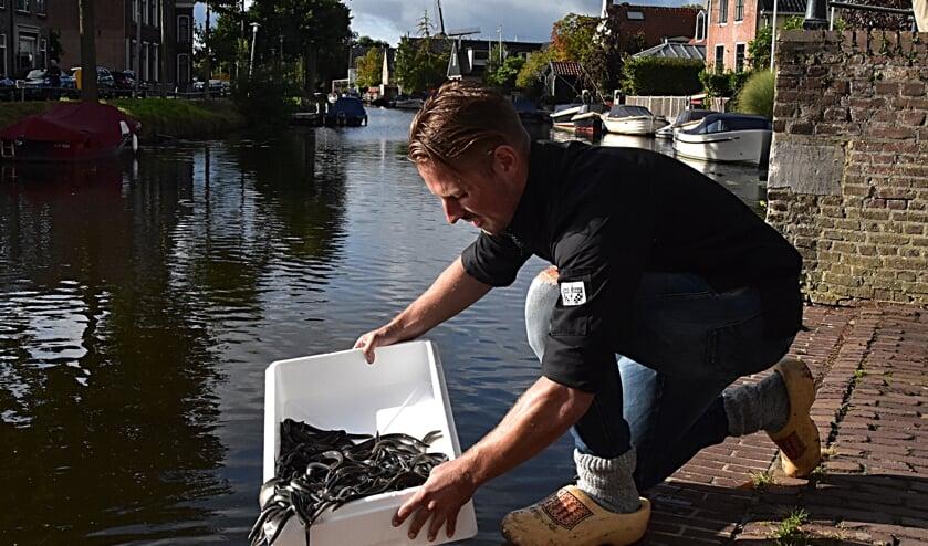 Marco van den Bosch zet palingen uit in de Oude Rijn. | Foto: Piet van Kampen