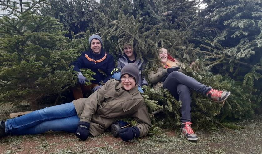 Van al dat gesjouw met flinke kerstbomen word je best moe, vinden deze explorers van de Lisser Kaninefaten.
