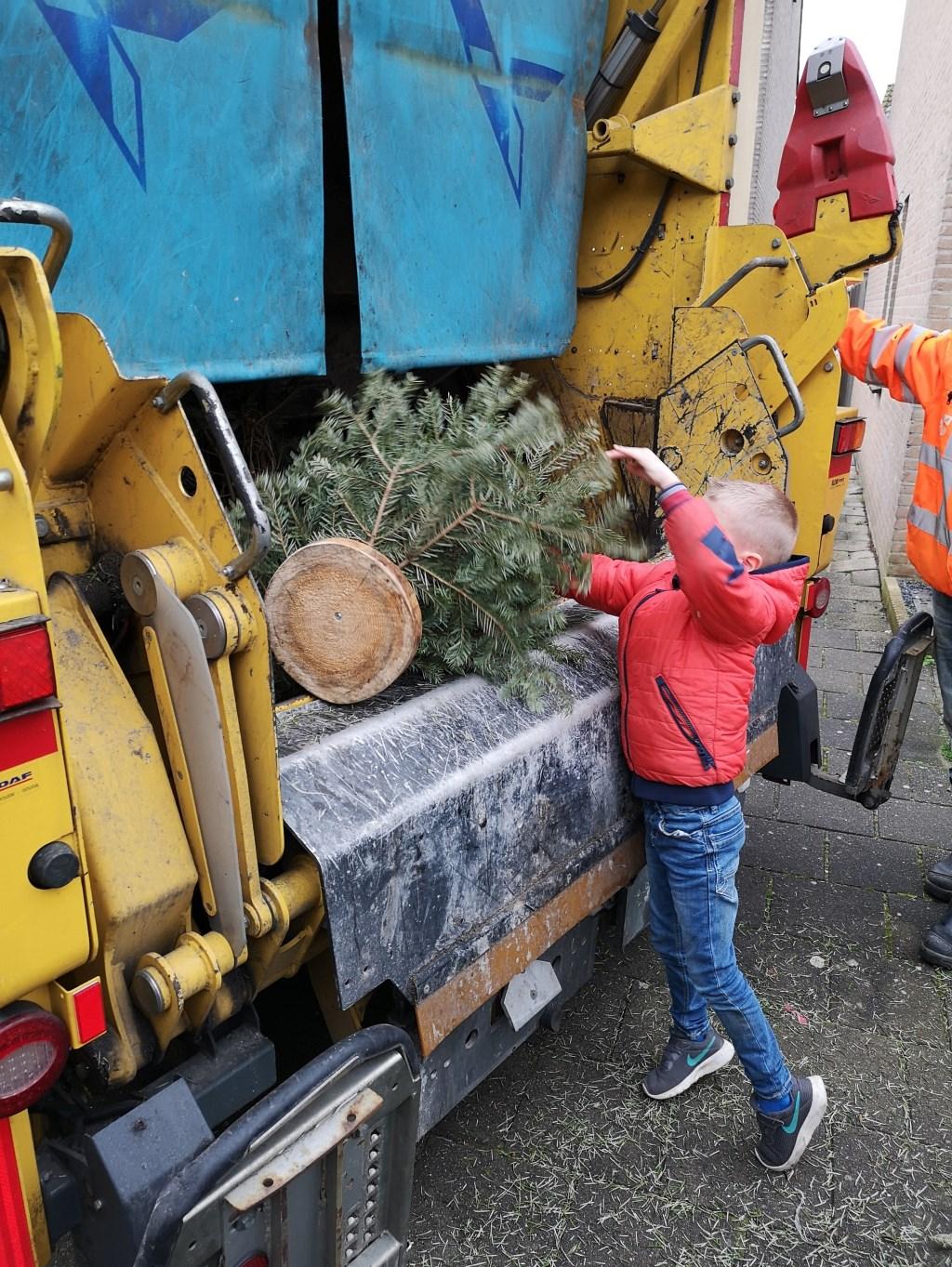 Een lezer stuurde deze foto in van Jamie die genoten heeft van het inzamelen van kerstbomen en er zelf één in de ophaalwagen mocht kieperen.  Foto: PR © uitgeverij Verhagen
