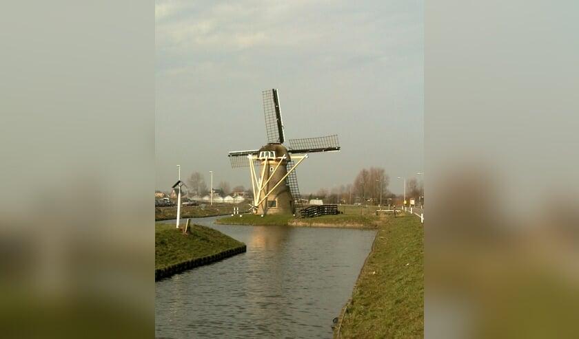 1999, toen de molen nog aan het eind van De Dijk in Rijnsburg stond.