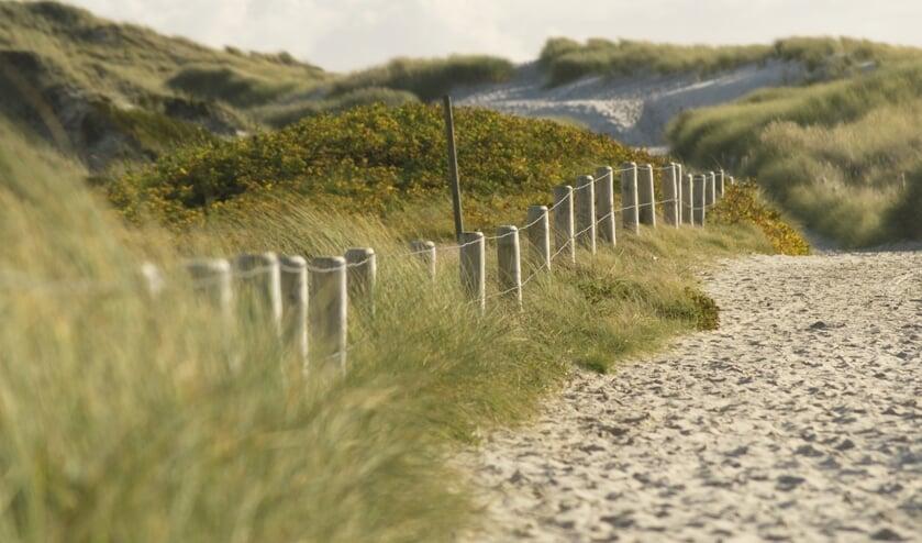 Heerlijk struinen door de duinen: de Amsterdamse waterleidingduinen zijn een prima plek om tot rust te komen. | Foto: pixabay