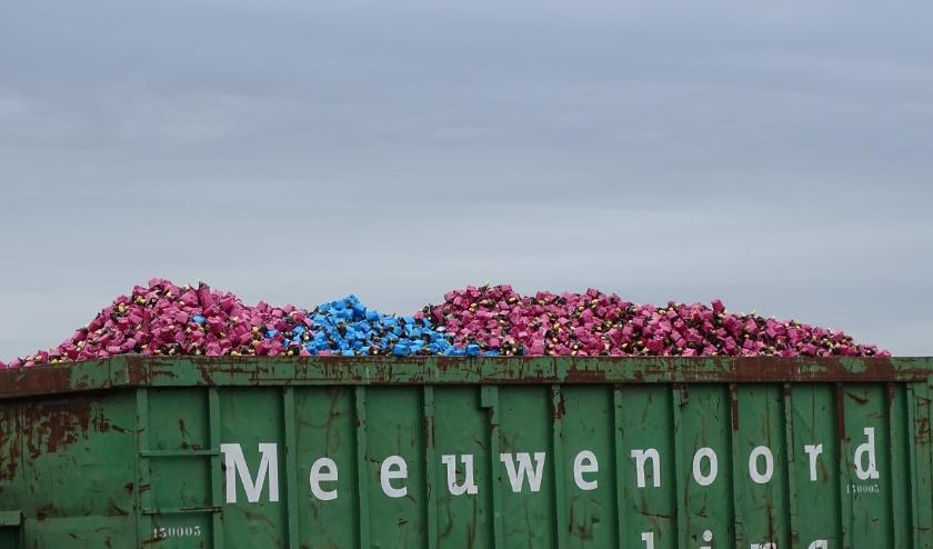 Ondernemers in de sierteeltsector hebben het momenteel erg moeilijk, nu de boel stil is komen te liggen. | Foto: pr