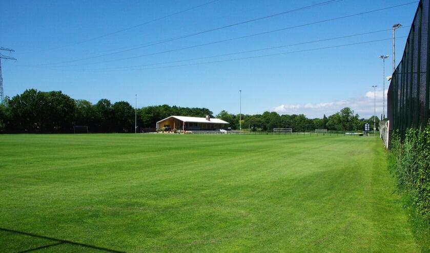 ASC wil graag twee velden in Sportpark Overveer vervangen door kunstgras.   Foto Willemien Timmers