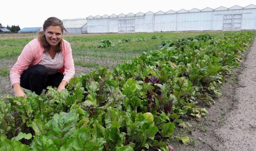 Marjolijn Balk op het land aan de Leidsevaart, waar een deel van de groente groeit. | Foto: MV