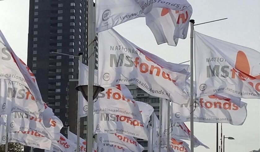 Door corona hebben veel activiteiten rond het MS Fonds stilgelegen, maar MS zelf staat niet stil.