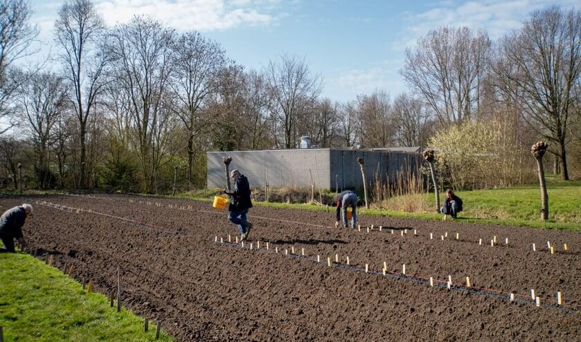 Vrijwilligers markeren met stokjes de grenzen van de schooltuintjes.