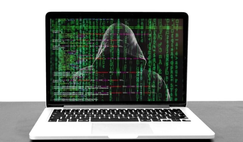 Criminelen zijn steeds vaker actief op internet, merkt ook de Belastingdienst.