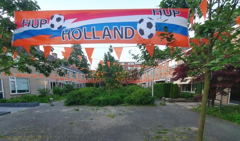 <p>Een prachtig spandoek en natuurlijk volop vlaggetje in de Ridderhof.</p>