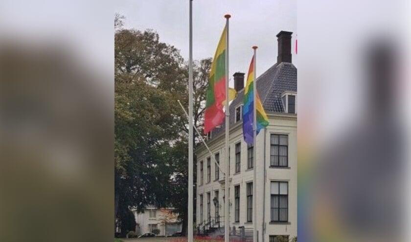 <p>De Hillegomse regenboogvlag.</p>