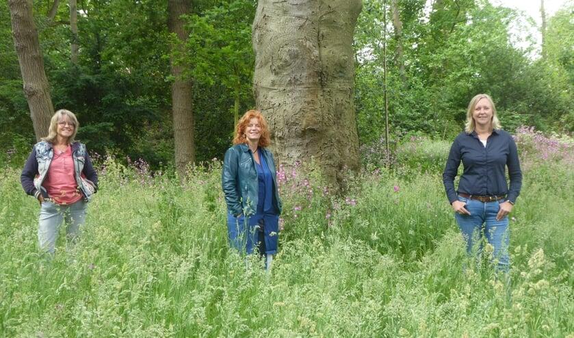 <p>Het A-team van Kunstklank: Martha Baalbergen, Herma van Piekeren en Sylvia van Stijn. | Foto: Ina Verblaauw</p>