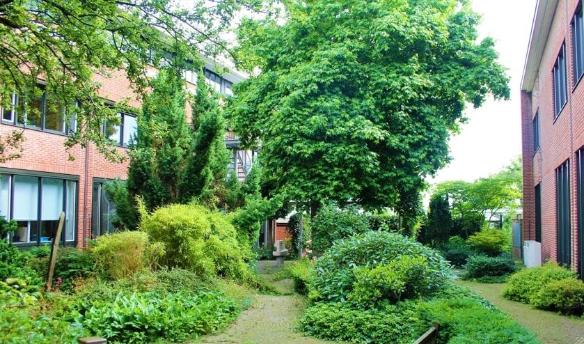 <p>De binnentuin heeft de voorkeur van een werkgroep die een plek voor een nieuw raadzaal moest selecteren.</p>
