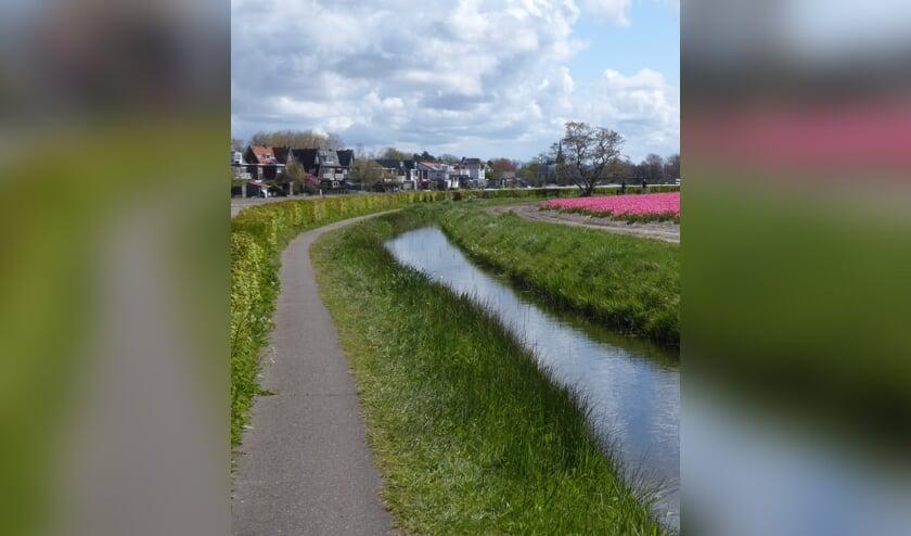 <p>Het pad langs de Oude Hillegommerbeek. | Foto: Marca Bultink.</p>
