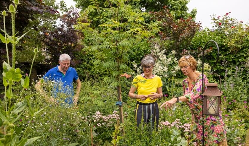 Tuinambassadeur John van Velzen en wethouder Heleen Hooij (m) bezoeken de tuin van Els de Groot.