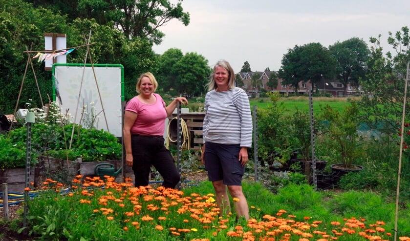 Jacqueline Bader (links) en Ingrid Verdegaal (rechts) in de Zelfoogsttuin Elsgeesterhof.