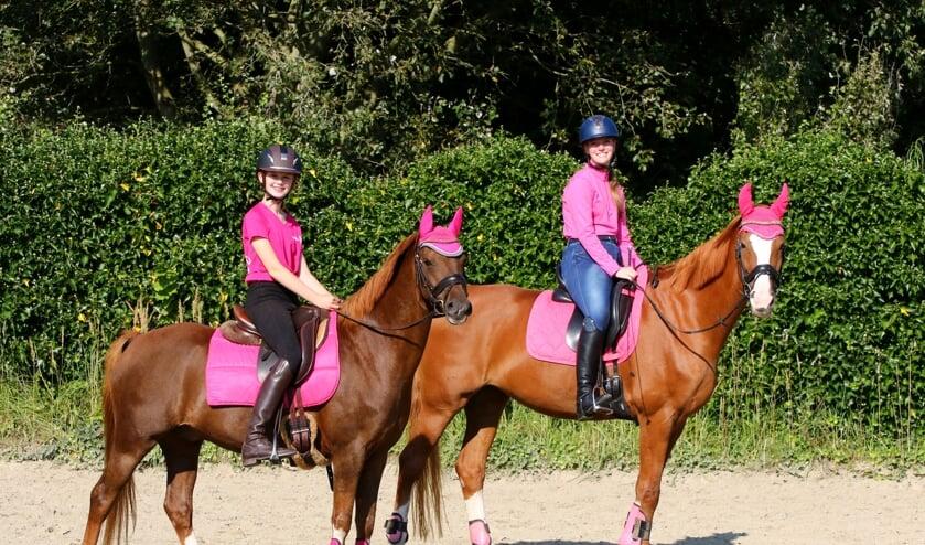 <p>Pensionstal Enthoven te Lisserbroek gaat een sponsorrit houden voor Pink Ribbon, onderdeel van KWF.&nbsp;</p>