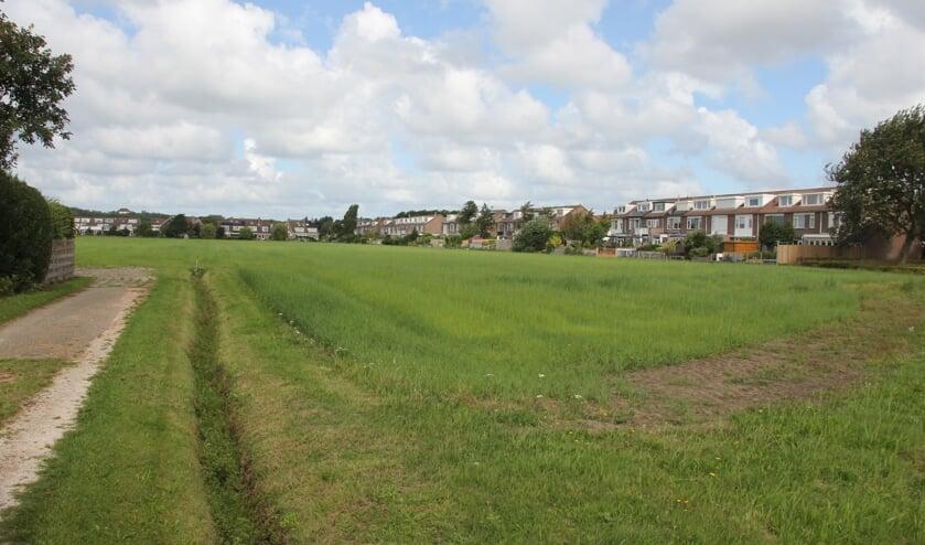 <p>De grond bij het Vinkenveld dient als voorbeeld voor een mogelijke nieuwe invulling voor clusterlocaties van GOM.   Foto: WS.</p>