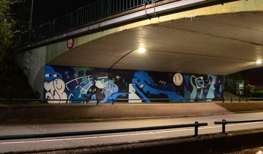 <p>Graffiti aan de Ruishornlaan. Dit soort grote graffitikunst zorgt ervoor dat er minder gekladderd wordt, merken de graffitikunstenaars uit Lisse.</p>