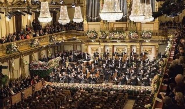 Het Wiener Philharmoniker tijdens het Nieuwjaarsconcert  © Rondom Goeree Schouwen-Duiveland