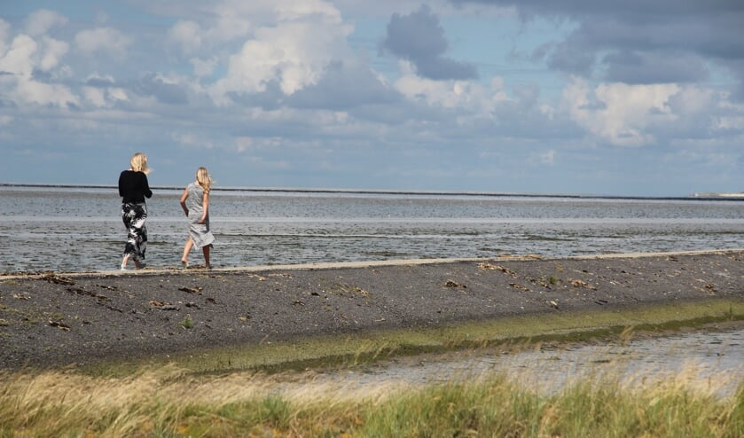 Archief/It Fryske Gea