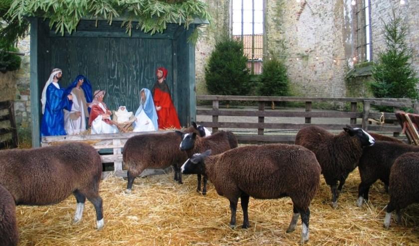 Broerekerk-Kerststal  002  23-12-2004