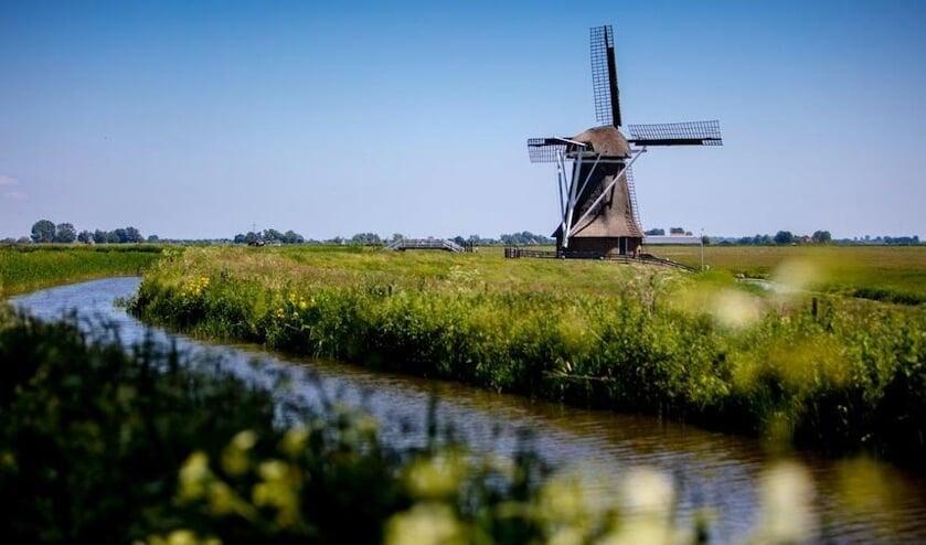 Beeld van de Hempensermarpolder bij Leeuwarden, waar het Wetterskip een kruidenrijk mengsel heeft gezaaid.