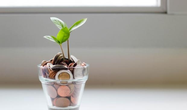 <p>De overheid helpt huiseigenaren om te investeren in groene oplossingen</p>