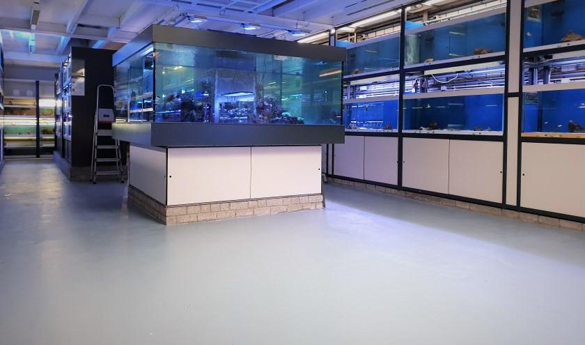 De lezing vindt plaats op de zeewaterafdeling bij Aquarium Coenen.