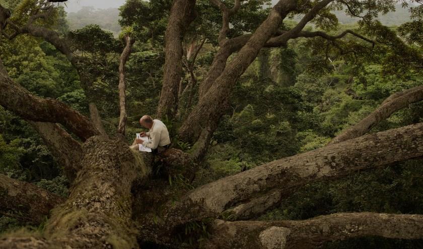 Tijdens het festival worden prijswinnende documentaires als The Secret Lives of Trees vertoond