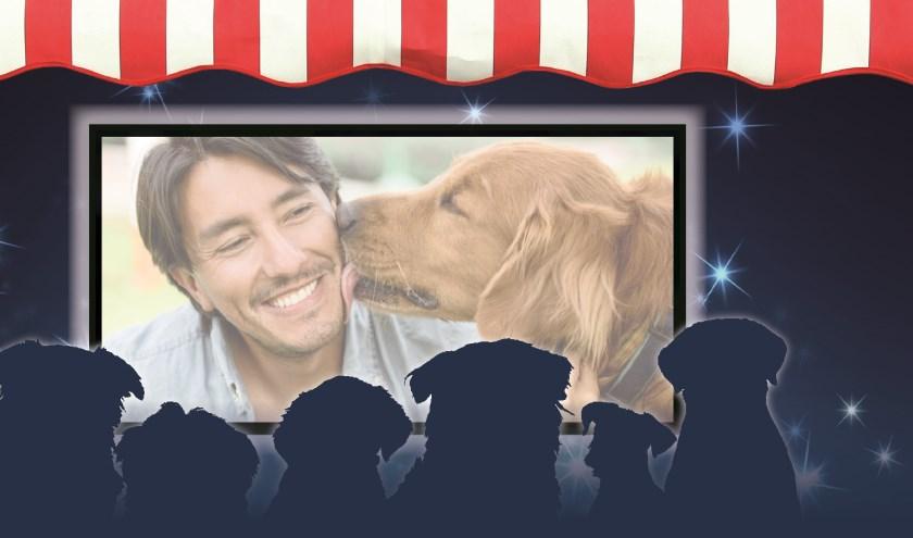 Het Dierendagfeest wordt afgesloten met een buitenbioscoop waarbij ook uw hond welkom is