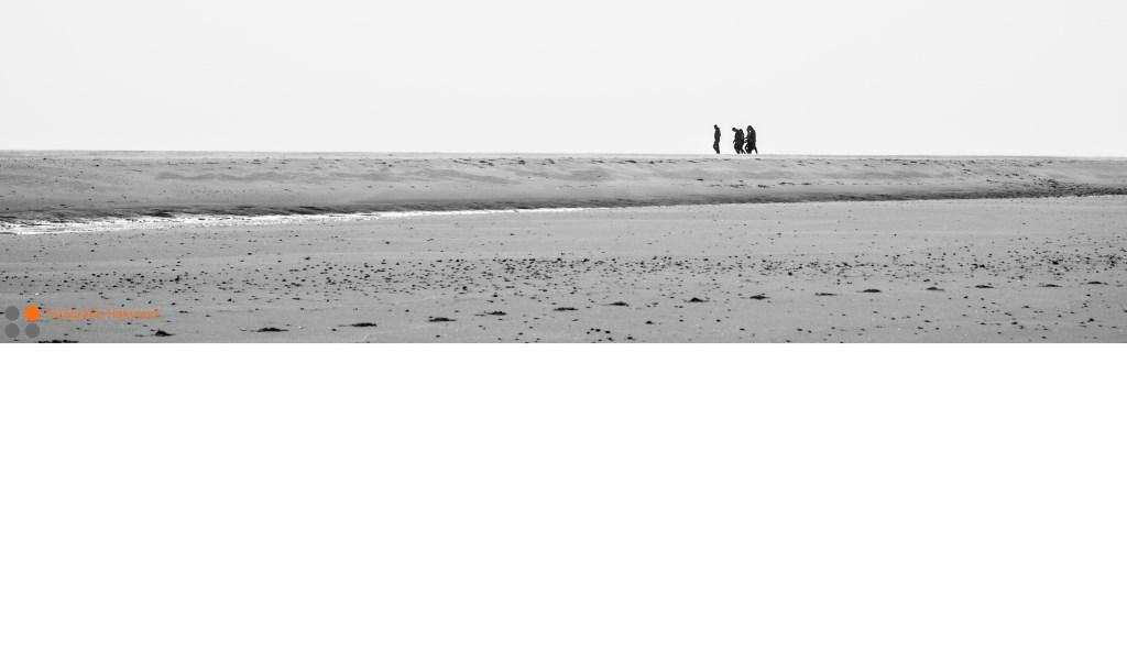 © Mediabureau Langeveld & De Rooy