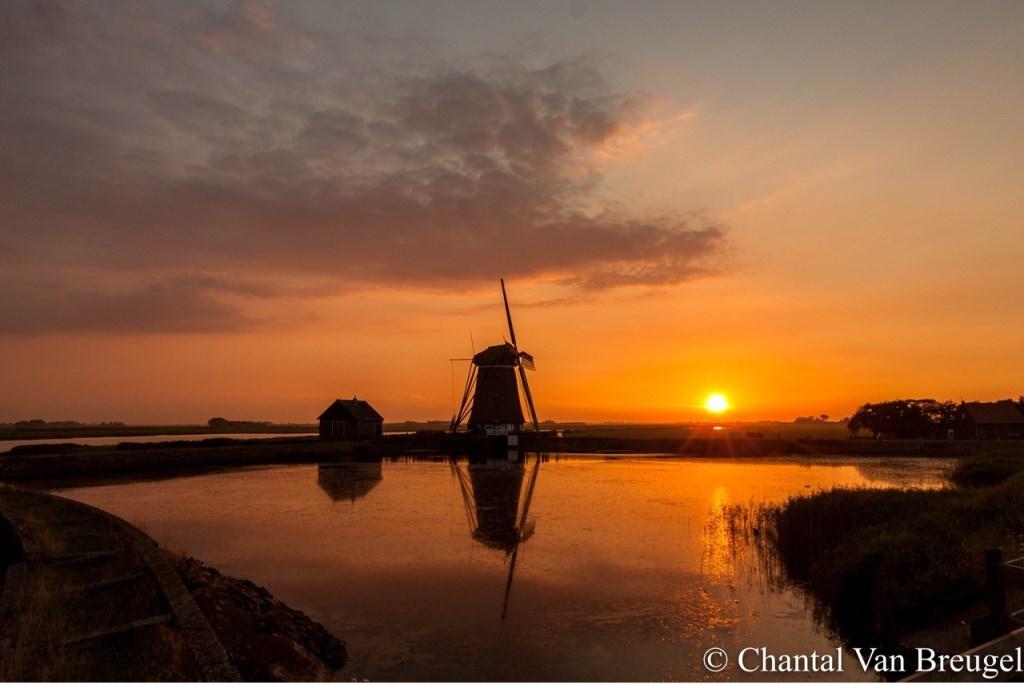 Chantal van Breugel  © Mediabureau Langeveld & De Rooy