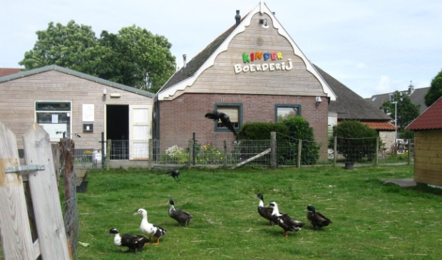 De kinderboerderij in Den Burg.