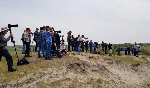 <p>Vogelaars tijdens Big Day Texel 2018. Dit jaar is de aanpak heel anders.&nbsp;</p>